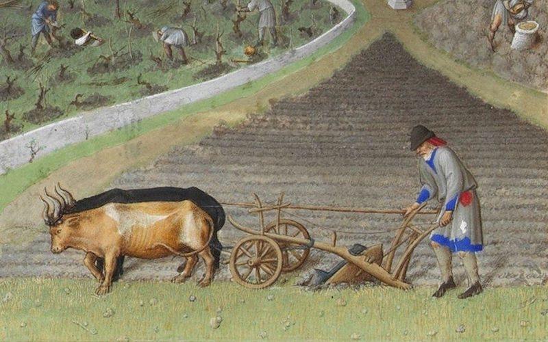 Evul mediu mijlociu